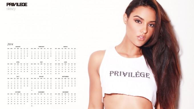privilege2014-1920